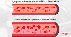 Nitric Oxide to Open the Blood Vessels