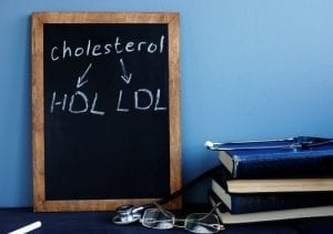 Nitric Oxide and Cholesterol