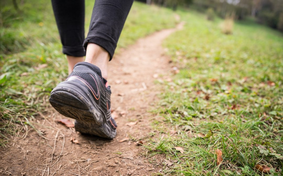 Best Exercise for your Immune System